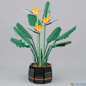 review 10289 bird of paradise