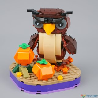 review 40497 halloween owl
