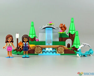 review 41677 forest waterfall