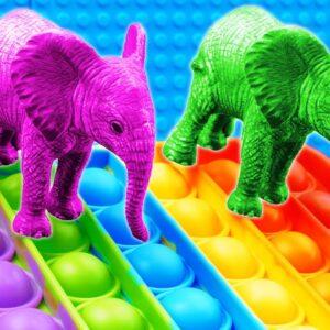 Mini Elephant Animals Pop it Racing